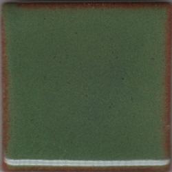 SHGreen%20Shino%20MBG044%20RC.jpg